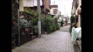 自宅録音です。 写真は本郷界隈。 「たけくらべ」稽古中です。 動画の抜...