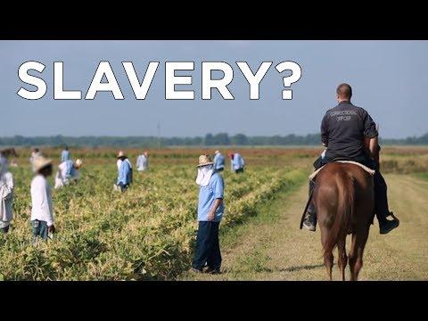 Prison Labor: Modern SLAVERY?