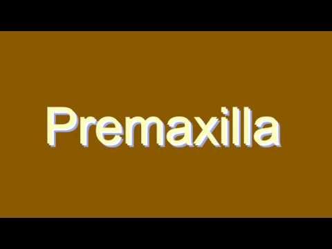 How to Pronounce Premaxilla