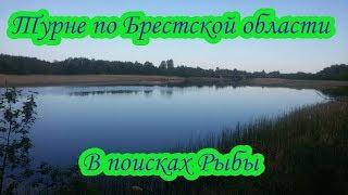 Турне по Брестской области В поисках рыбы