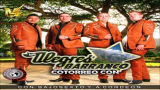 Los Alegres del Barranco - Seras Mia (En Vivo)(2015)