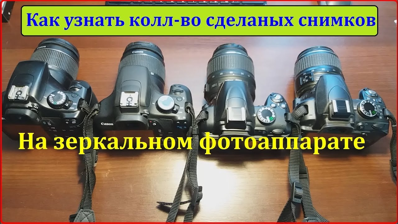 Как узнать пробег фотоаппарата (зеркального) Canon, Nikon, Sony...