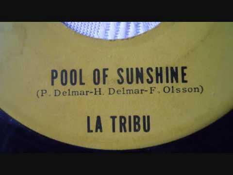 Pool Of Sunshine - La Tribu - Sanfris 19