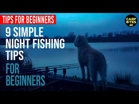 9 Simple Night Fishing Tips If Your New To Carping!