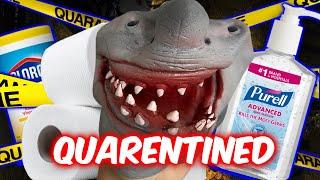 SHARK PUPPET GETS QUARANTINED!!!!!