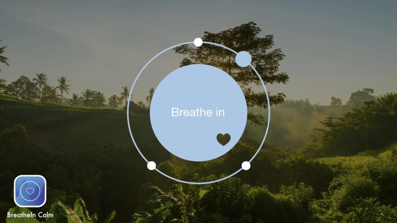 BreatheIn Calm App | 2 min Breathe Bubble | Breathing Exercise Jungle