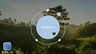 BreatheIn Calm App | 2 min Breathe Bubble | Breathing Exercise Jungle