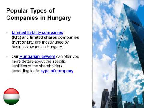 Types of Companies in Hungary