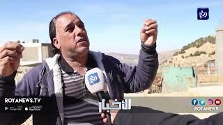 حيوانات مفترسة تهاجم حي القارمة في بلدة القادسية بالطفيلة - (10-2-2019)