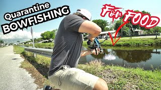 Quarantine Bow-Fishing For Food in the City