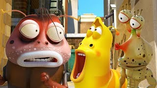 LARVA - MAGICAL BROWN | Cartoons For Children | LARVA Official
