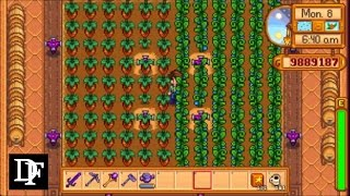 Stardew Valley - Ancient Fruit Vs Rare Seed for the Greenhouse