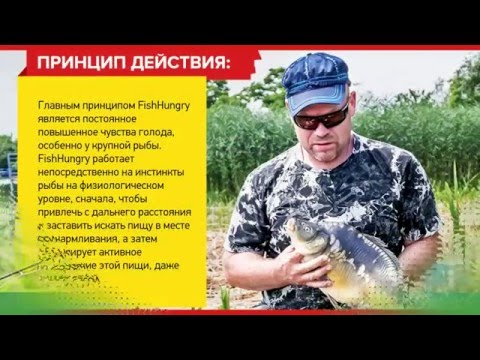 активатор клёва fishhungry купить в рязани
