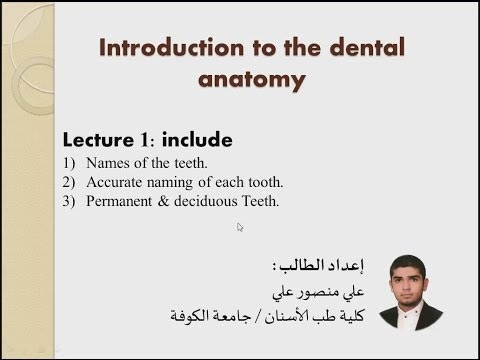 introduction to the dental anatomy-lecture1