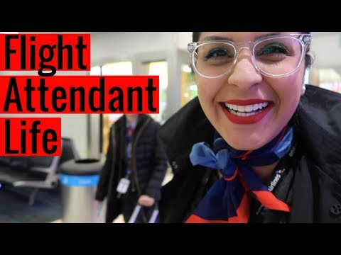 What Its REALLY Like To Be a  Flight Attendant  |  VLOG 6, 2018