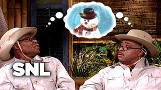 Brian Fellow 4 - Saturday Night Live