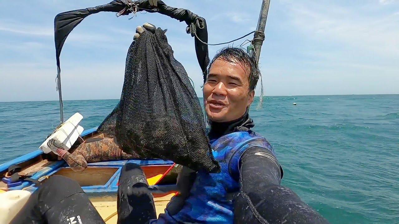 鋒哥水下發現寶地,礁石上扒著一窩大海螺,隨便就抓了一網兜【探海漁人】