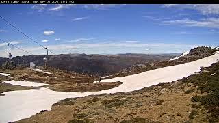 Preview of stream Alpine ski resort in Thredbo (Basin T-bar), Australia