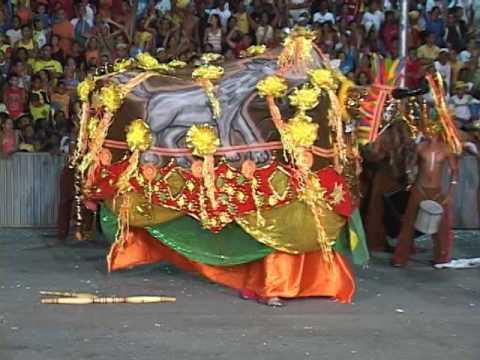 Boi Cão de Raça 2006