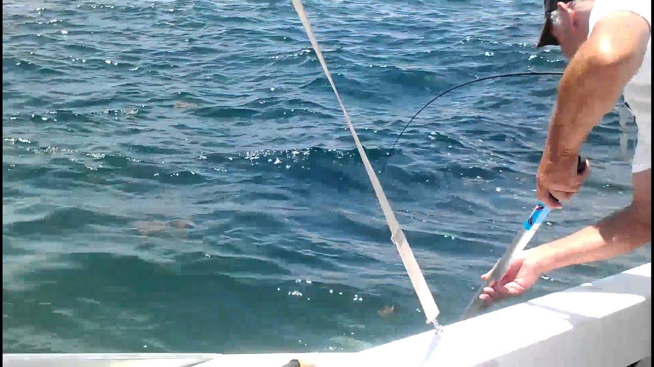 King mackerel fishing 4 miles offshore from freeport tx for Freeport fishing report