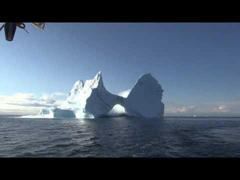 Айсберги - опасные соседи