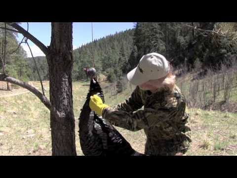 How to Cape a Turkey Part 1