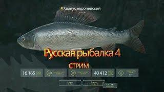 Російська рибалка 4. Качаємо розряд ★Куори що ти нам подаруєш?★