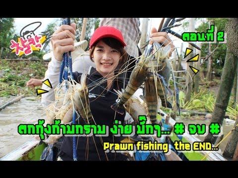ตกกุ้งก้ามกราม ง่ายมากๆ (Easy prawn fishing) ตอนที่2# by fishingEZ