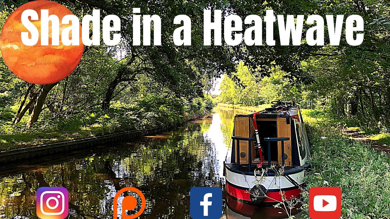 Our Narrowboat Encounters a Fallen Tree That Halts Canalboat Life Living on the Llangollen Canal
