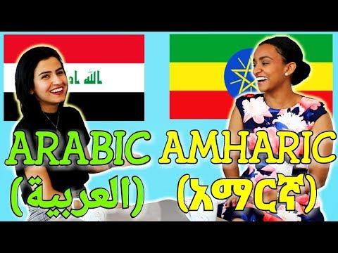 Similarities Between Arabic and Amharic