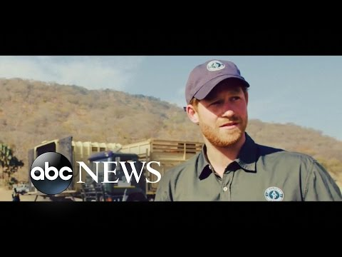Prince Harry Joins Elephant Conservation Project in Malawi