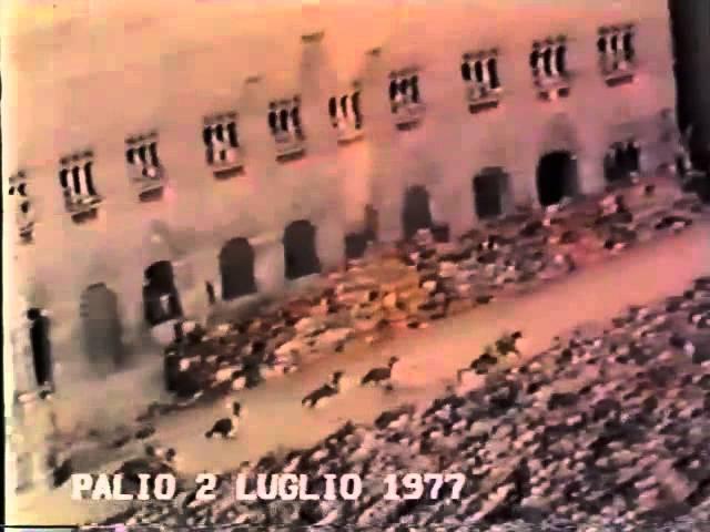 Palio 2 luglio 1977