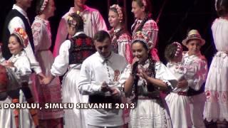 LA FANTANA DORULUI - VLADUTA LUPAU, SIMLEU SILVANIEI 2013
