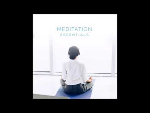 Meditation Essentials 07 Recognizing Obstacles Audio Lecture