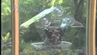 The Aspects Window Cafe Bird Feeder
