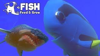 เม็กกาดอลลี่!! ปะทะ เม็กกาโลดอน!! | Fish Feed and Grow #58