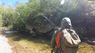 Small Stream Fly Fishing at it's FINEST   a GoPro Film