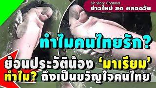 ย้อนประวัติน้อง 'มาเรียม' ทำไม? ถึงเป็นขวัญใจคนไทย