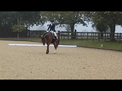 Mika Brook Farm Intro 22/10/16
