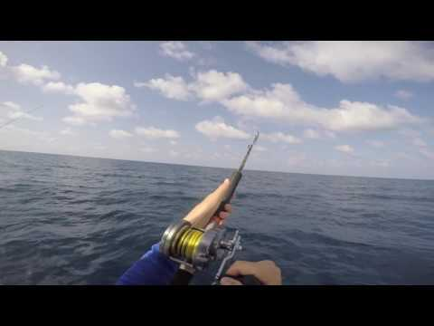 Offshore vertical jigging for tunas, jacks +more