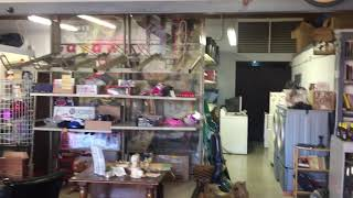 Thrift store's closing to leave big hole in Peoria