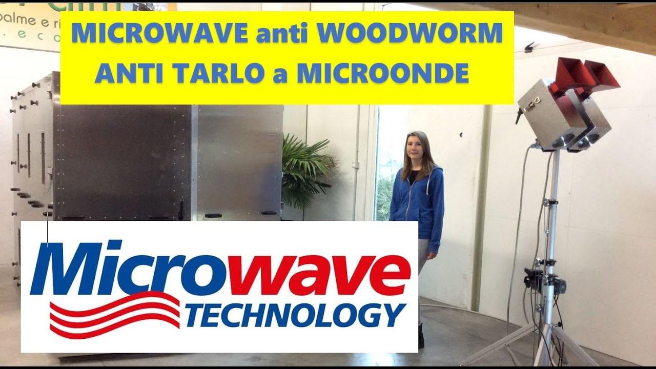 Camera anti tarlo a microonde per mobili travi e parquet - Trattamento per tarlo dei mobili ...