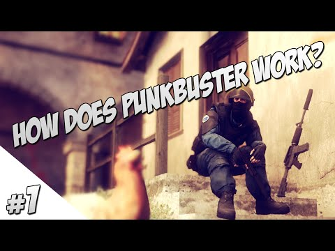 This is how punkbuster works (in CS:GO)