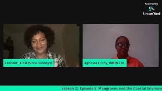Siren Sundays Season 2 Episode 5: Mangroves and the Coastal Ecosystem
