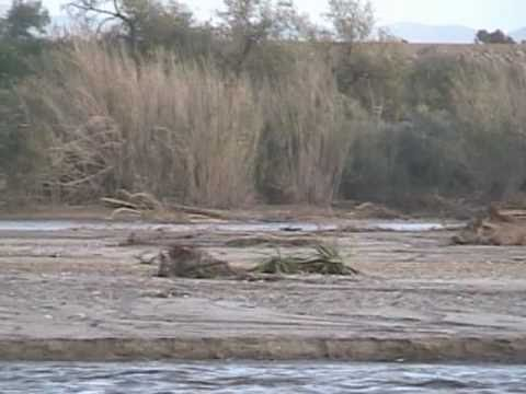 Santa Clara River After National Weather Service Issued A Flash Flood Warning Part 2 of 2