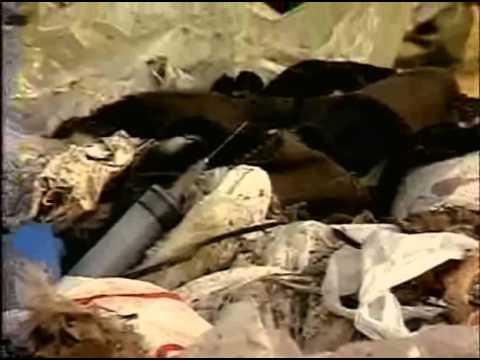 Eduardo Coutinho   Boca de Lixo 006 found via clan sudamerica net