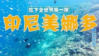 特辑︱全球排名第一的潜水圣地并非浪得虚名,太过瘾太刺激了! 【品城记】