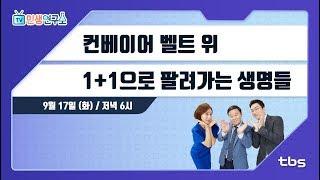 컨베이어 벨트 위... 1+1에 팔려가는 생명들 [TV민생연구소/안진걸/곽현화/박철민]