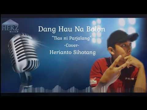 Dang Hau Nabolon (Tias Ni Parjalang) Cover - Herianto Sihotang