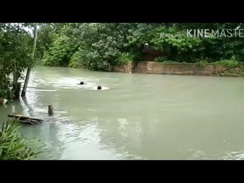 Download Hulicam Habang Naliligo sa Ilog